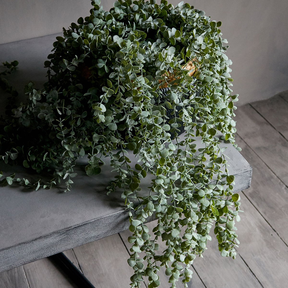Kunstig Blomst Eucalyptus Trailing